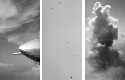 sally gall Aerialist 2012 .jpg