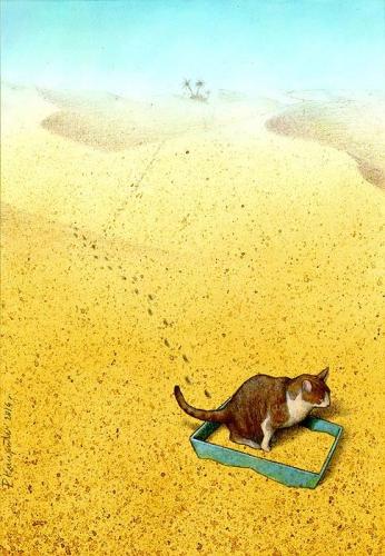 pawel Kuczynski cat sandbox 5_n.jpg