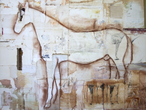 Susan Friedman Practical-Horse-Keeper-L.jpg