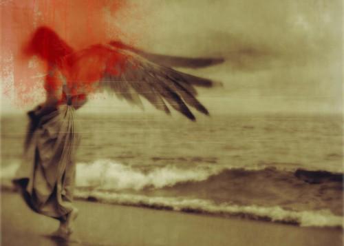 kamil vojnar Angel on the Beach_sm.jpg