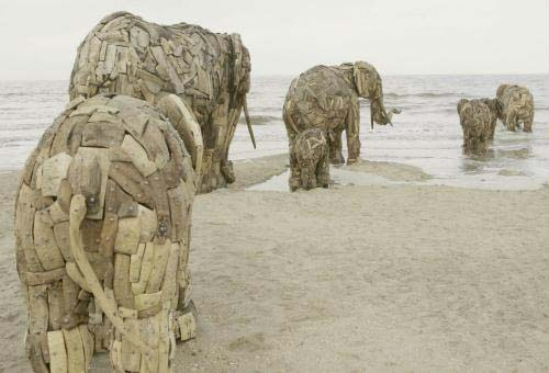 Andries Botha Elephants you can buy my heart and my soul.jpg