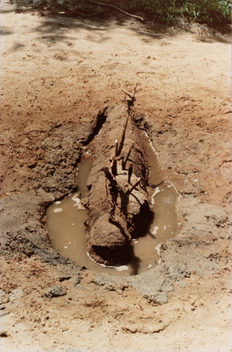 Ana Mendieta, Untitled (Fetish series, Iowa) , 1977. .jpg