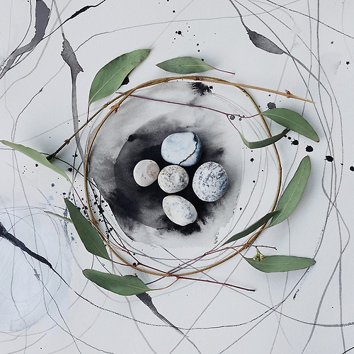 Fiona Watson the cuckoo's nest by .jpg