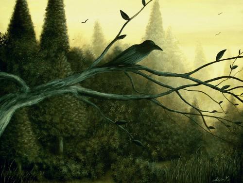 philippe-fernandez-of-the-night-gothic-crow-.jpg