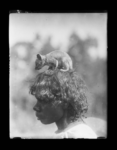 Dr Herbert Basedown Pongaponga People, Northern Territory, Australia, 1922.jpg