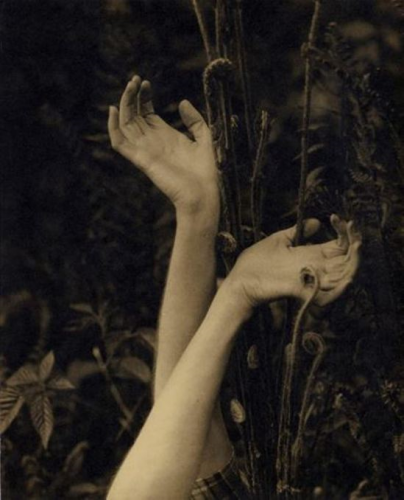 Edward Steichen. Dana's Hands 1923..png