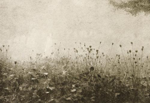 Emile Joachim constant puyo brouillard-1906.jpg