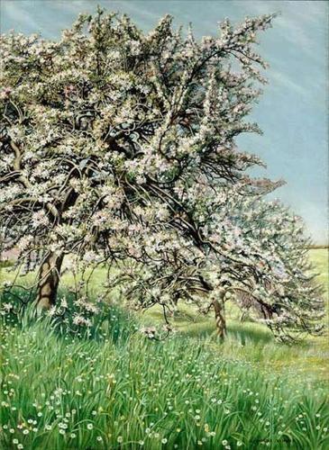 carlos schwabe pommiers fleuris 1912.jpg
