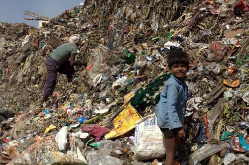 William Brown New Delhi Bhalswa landfill site Inde déc 2016 (2).jpg