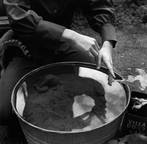 Imogen Cunningham Aiko's Hands 1971.jpg