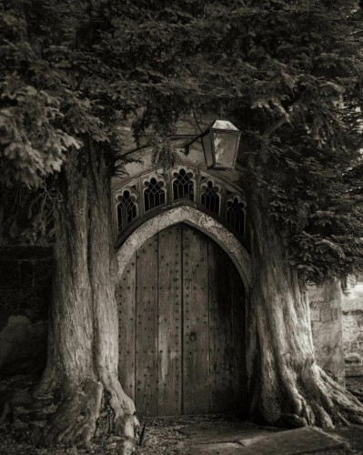 beth moon portraits of time med_the-sentinels-of-st-edwards-jpg.jpg