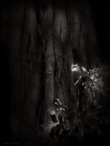 Aimery Joëssel Inner Asia #14.jpg