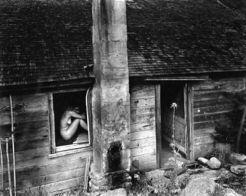 Wynn Bullock, Woman and Thistle (1953).jpg