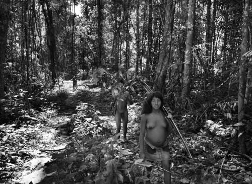 Sebastião Salgado les Awá Amazonie Brésil 7.jpg