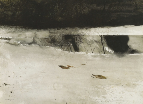 Andrew Wyeth Ice pool U.jpg