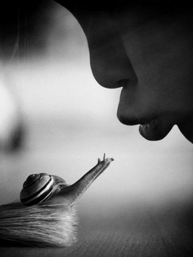 lr-baiser-est-universel.jpg
