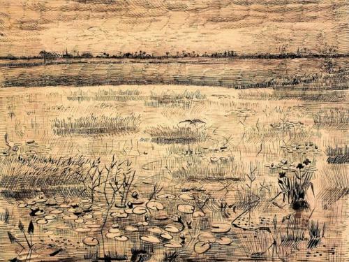 Vincent van Gogh, Marsh with Water Lillies,1881.jpg