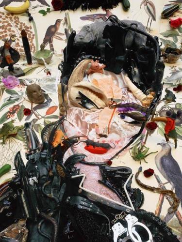Bernard Pras catwoman.jpg
