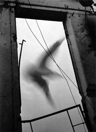 Heinz Hajek-Halke, Le cauchemar II, 1950.jpg