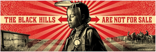 Aaron Huey's Pine Ridge Indian street project The Black Hills Are Not For Sale.jpg