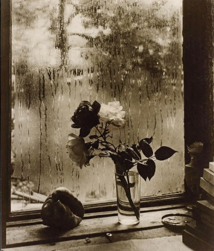 Josef Sudek, The Last Roses, 1956.jpg