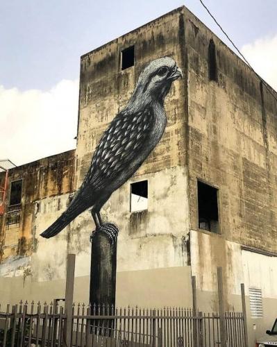 roa Streets of Humacao, Puerto Rico.jpg