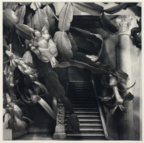 Marlène MacCallum Stairway From the series 'Strange Chambers', 2001.jpg