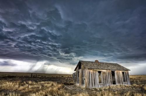 David Mayhew Weathered_Homested.jpg