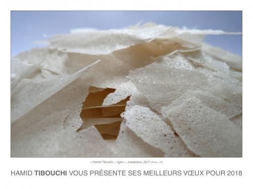 Tibouchi_Voeux2018_HT1.jpg