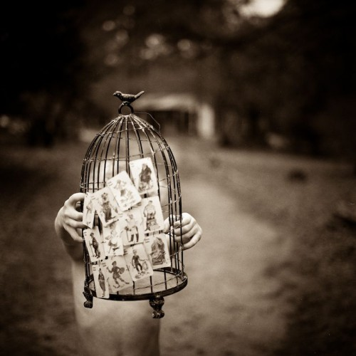 Lori Vrba Untitled.jpg