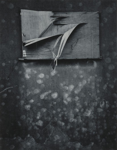 Jack Welpott, Untitled, Tokyo, 1976.jpg
