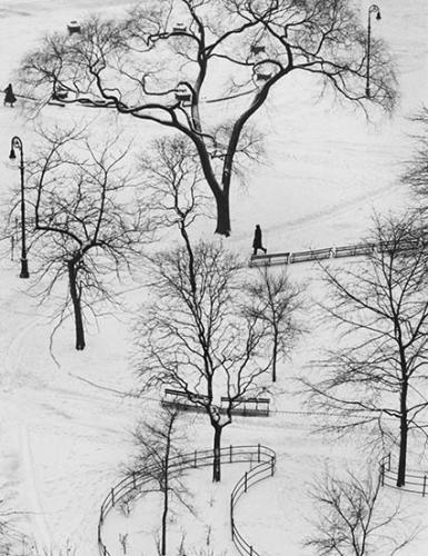 André Kertész_425.jpg