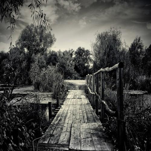 Sandra Štimac Little old bridge 54078.jpg