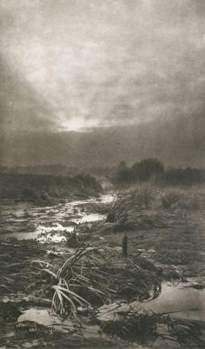 Alfred Horsley Hinton, la lande sauvage, 1896.JPG