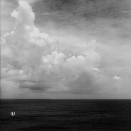 Sally Gall Evidence of Wind 1997.jpg