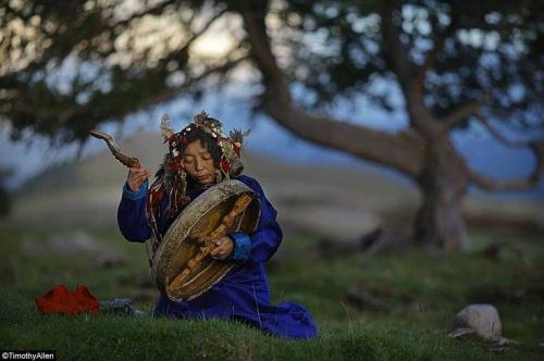 Timothy Allen shaman Tuva et arbre sacré.jpg