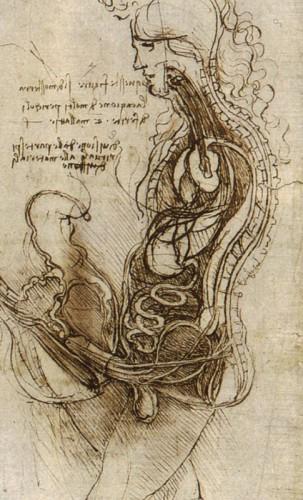Léonard de Vinci .jpg