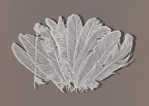 Bovey Lee, Trimming Feathers, cut paper,t.jpg