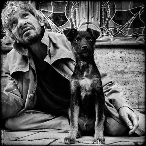 denis buchel dog's life 14.jpg