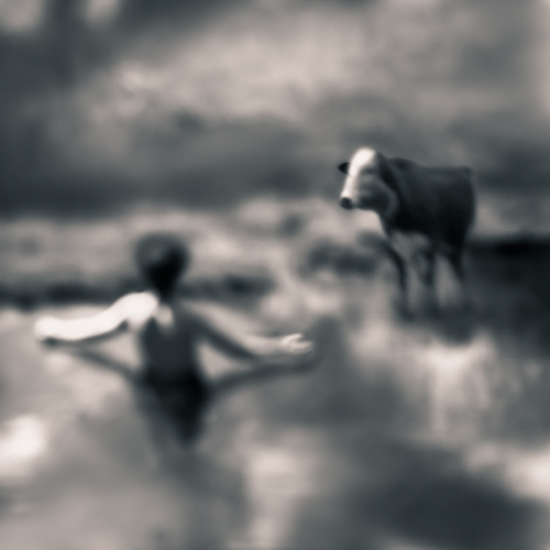 tami bone Bountiful1.jpg