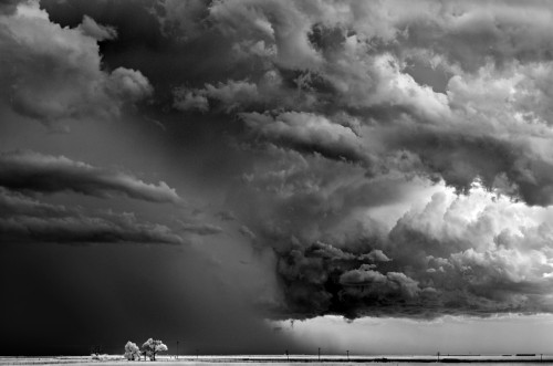 mitch dobrowner Trees-Clouds Texline Texas 2009 .jpg