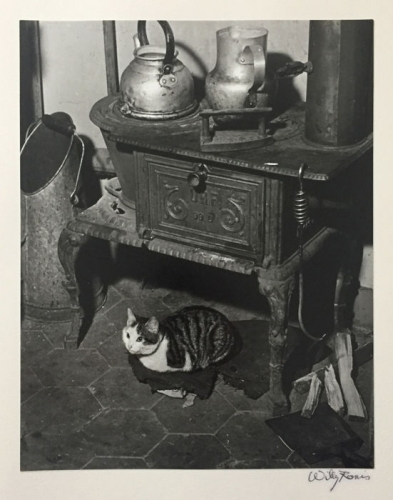 Willy  Ronis Le chat au poêle, Paris.jpg