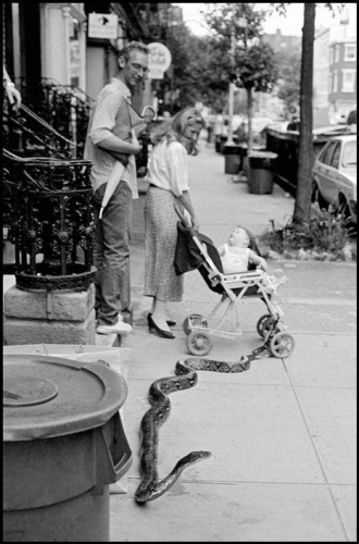 Leonard Freed USA. New York City. 1985. Pet snake.jpg