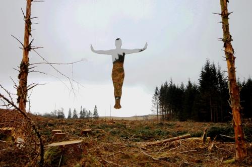 Rob Mulholland Levitate -  Forest felled 2.jpg