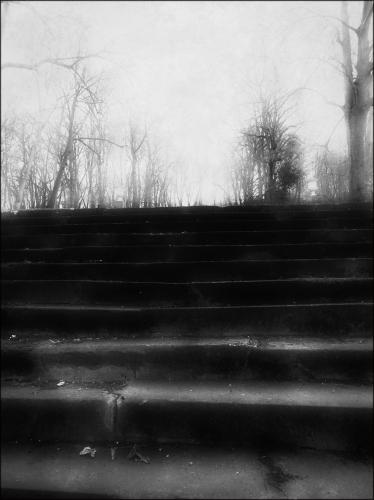 Etienne Cabran 0 280.jpg