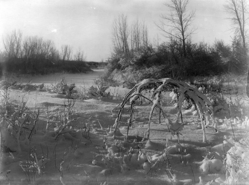Richard Throssel, Old wickiup frame in snow - old Crow sweat lodge, ca..jpg