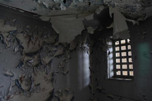 joanne teasdale prison window.png
