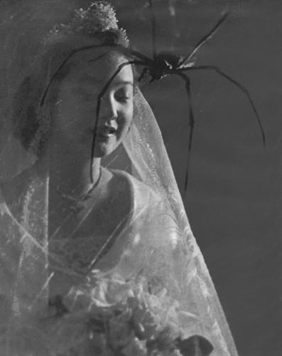 Francis Wu (1911-1989) Blind Love 1950's.jpg