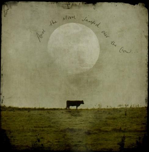 jamy heiden The-moon-and-the-cow___-1000x1024.jpg