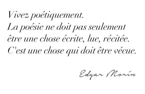 Edgard Morin.jpg